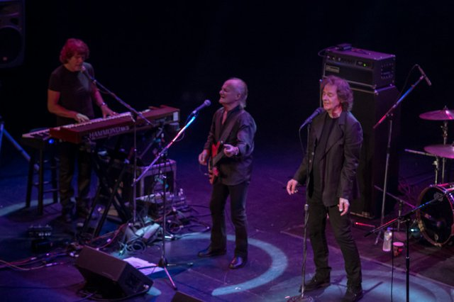 the zombies pabst theater 2013.jpg.jpe