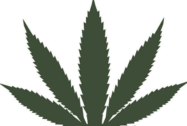 weed.jpg.jpe