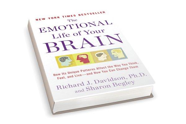 bookpreview_brain.jpg.jpe
