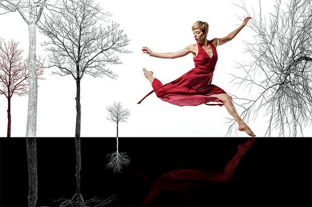 dancepreview_danceworks_danbishop.jpg.jpe