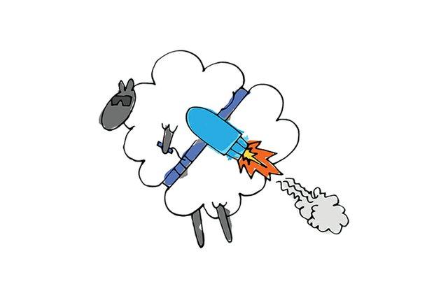 aegateway_sheep.jpg.jpe
