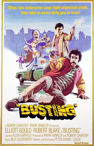 busting2.jpg.jpe