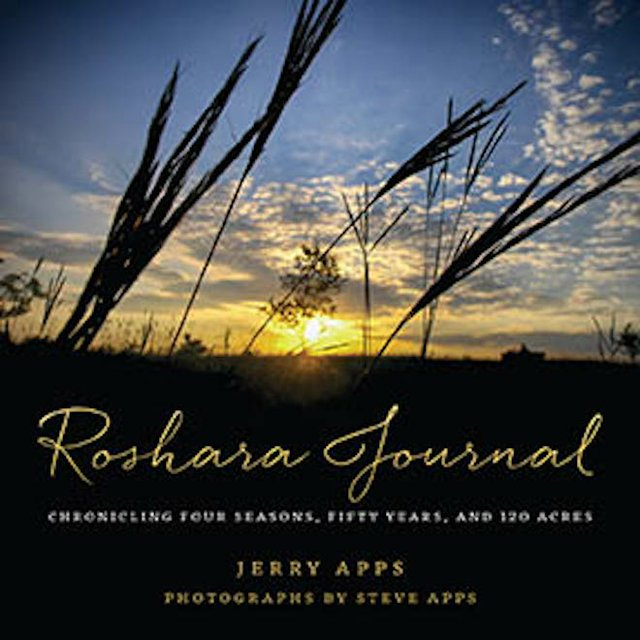 bookreview_rosharajournal.jpg.jpe