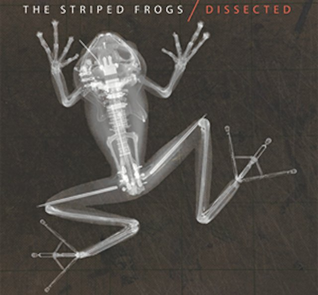 albumreview_stripedfrogs.jpg.jpe