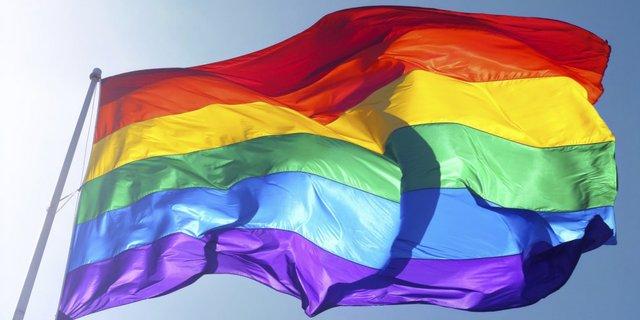 prideflag.jpg.jpe