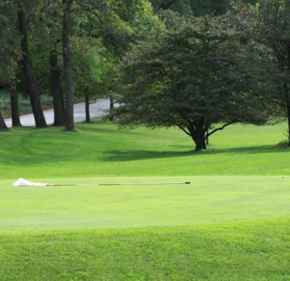 golf.jpg.jpe
