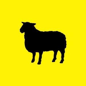 shepherd logo.jpg.jpe