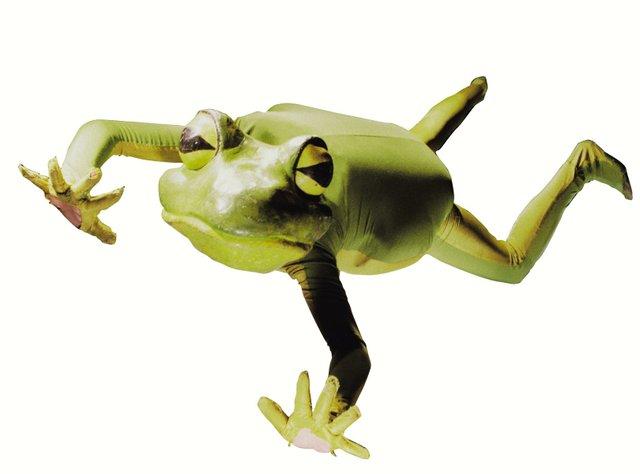 frogz_frog.jpg.jpe