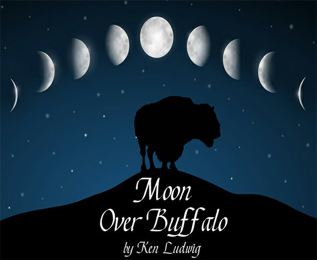 curtains_moonoverbuffalo.jpg.jpe