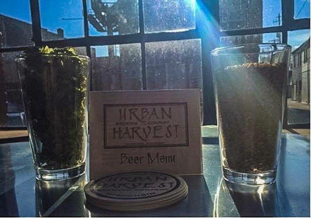 urbanharvestbrewing3.jpg.jpe