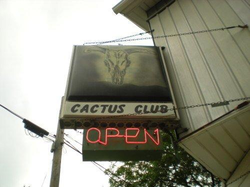cactus.jpg.jpe
