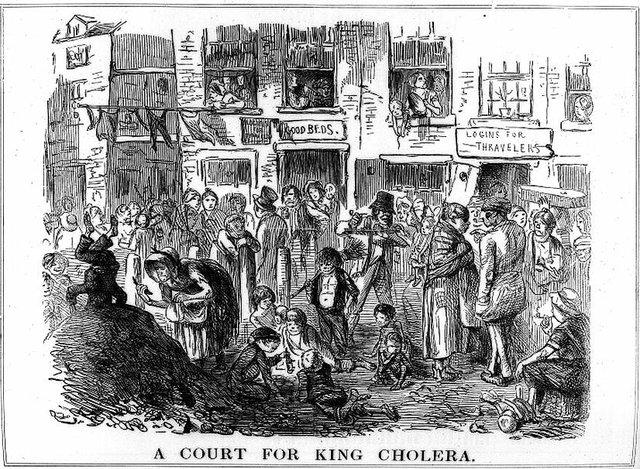 kingcholera.jpg.jpe