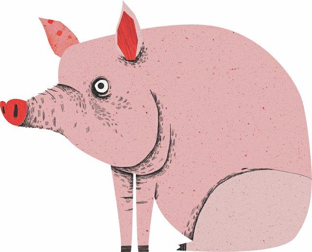 AEGateweay_Pig.jpg