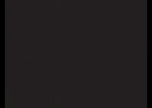 elijah-craig-logo.png