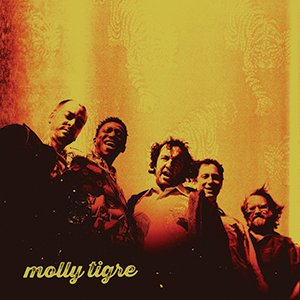 AlbumReview_MollyTigre.jpg