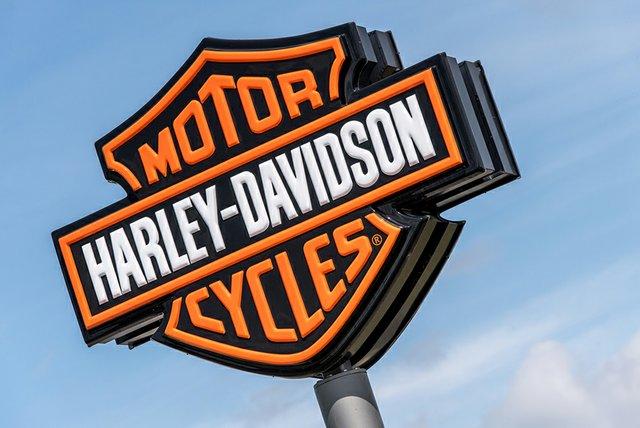 TakingLiberties-Harley.jpg