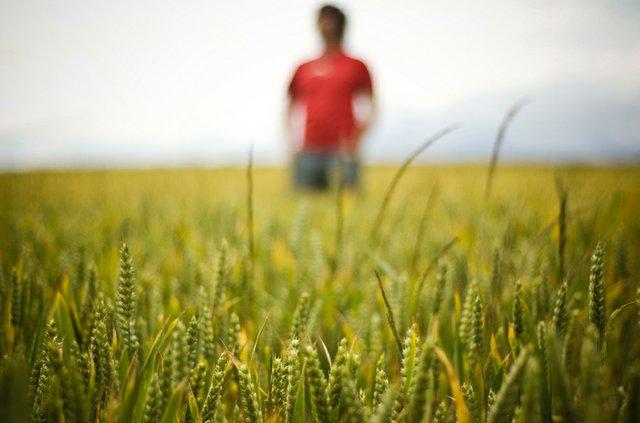 News-TakingLiberties_Farmer.jpg