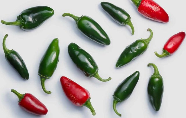 jalapeno-peppers.jpg