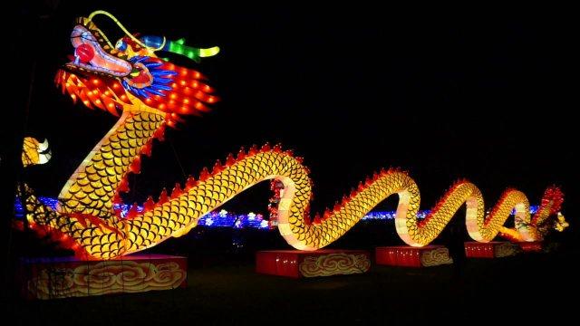 china-lights2018.jpg