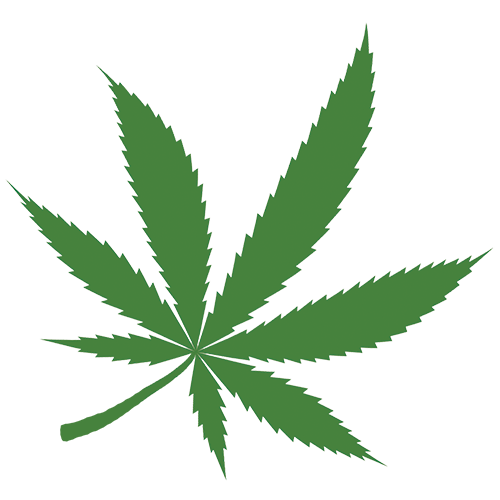 CannabisConnection_Leaf.png