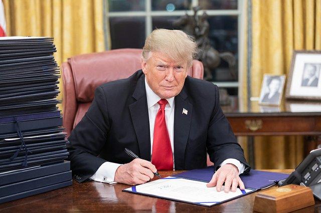 TakingLiberties_Trump_WhiteHouse_(by_Shealah_Craighead).jpg