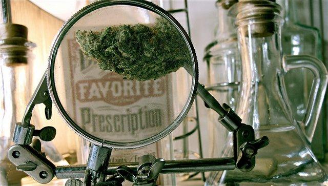 Cannabis_Two.jpg