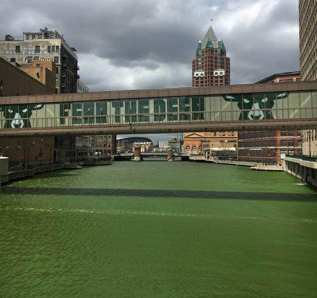 bucks-green-2.jpg