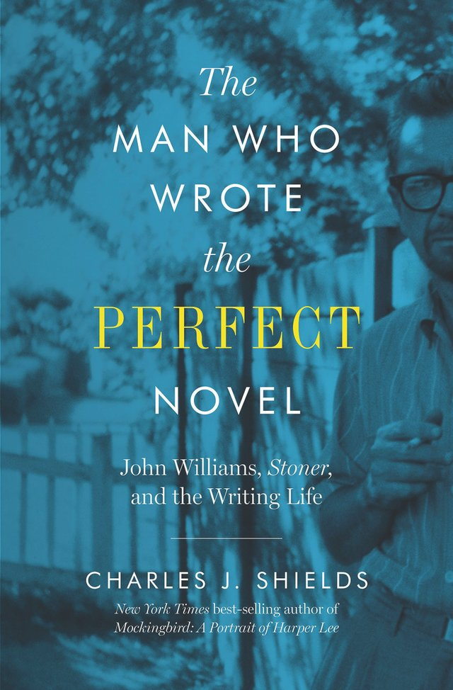 ShortBookReview_TheManWhoWroteThePerfectNovel.jpg