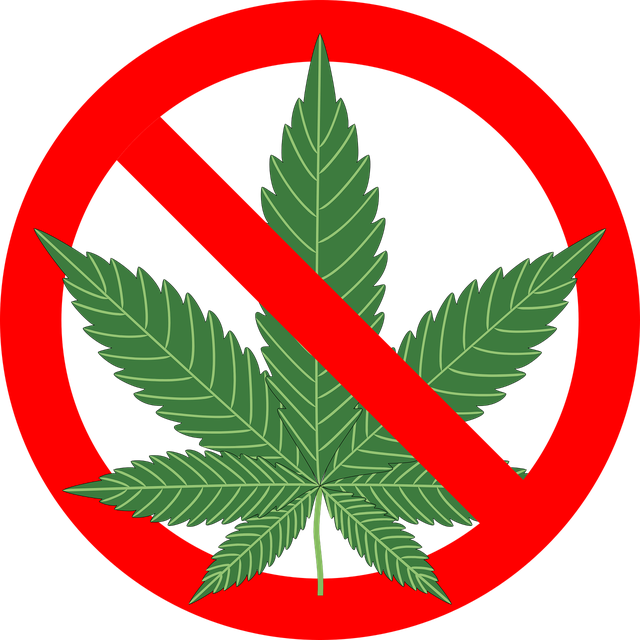 cannabis-1254745_1280.png