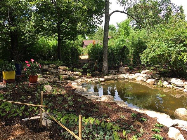 GardenWalk_pond(BlaineSchultz).jpg