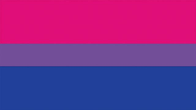 MyLgbtqPov_BisexualFlag.jpg