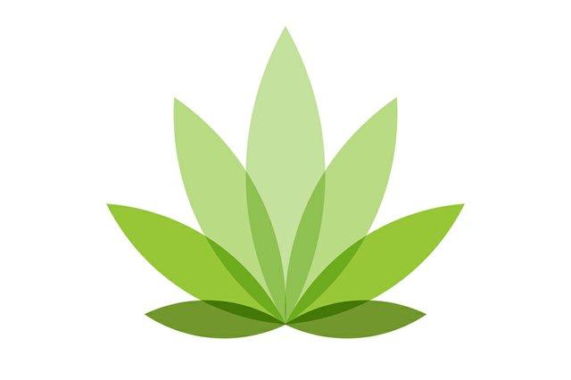 CannabisConnection_1.jpg