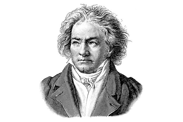 InReview_MSO_Beethoven_(ByNicoOlay).jpg