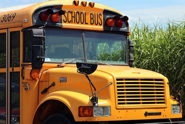 school-bus-4406479_1920.jpg