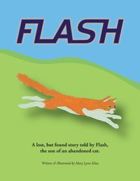 Flash jpg v03 front cover.jpg