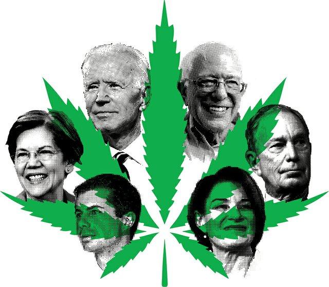 CannabisTwo_Candidates.jpg