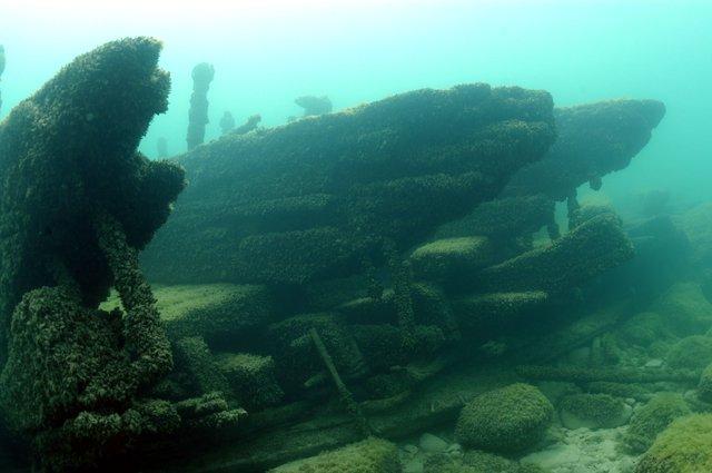 Appomattox Shipwreck.jpg