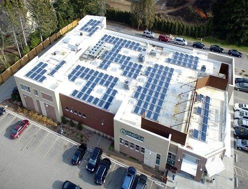 MQ Solar Panels.jpg