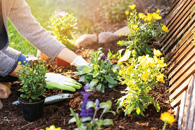 Home&Garden_D.jpg