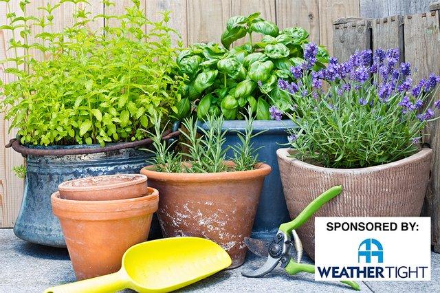 HomeGarden_Herbs-wsponsor.jpg