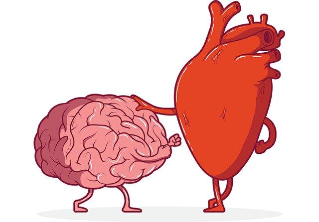 OutofMyMind_HeartBrain.jpg