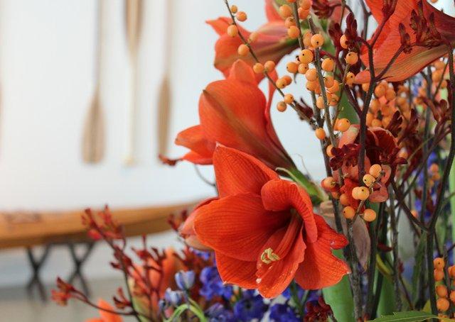 Bloomin_Digital_915x650.jpg