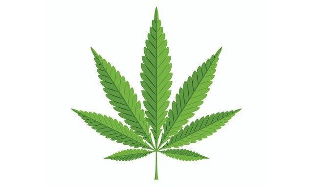 CannabisOne_MarijuanaLegalization.jpg
