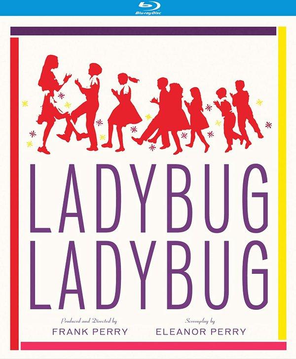 Ladybug Ladybug.jpg