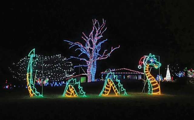 culture_This Month MKE_Wonderland of Lights(Racine Zoo).jpg