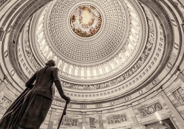 news_Taking Liberties_U.S. Capitol Building Rotunda(dkfielding:Getty Images).jpg
