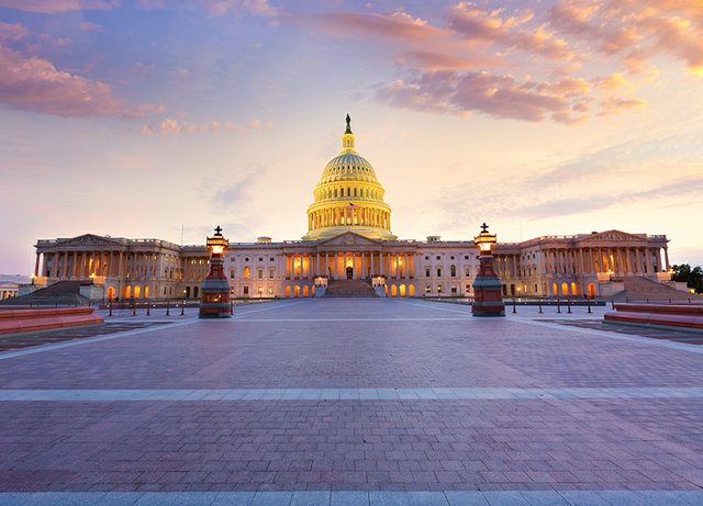 news_Taking Liberties_US Capital Building (LUNAMARINA:Getty Images).jpg