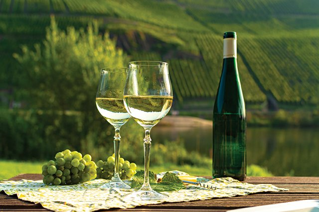 food-drink_Beverages_Riesling in Mosel River Valley in Germany (barmalini:Getty Images).jpg