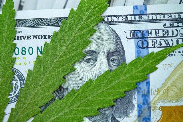 Cannabis leaf on $100 bill